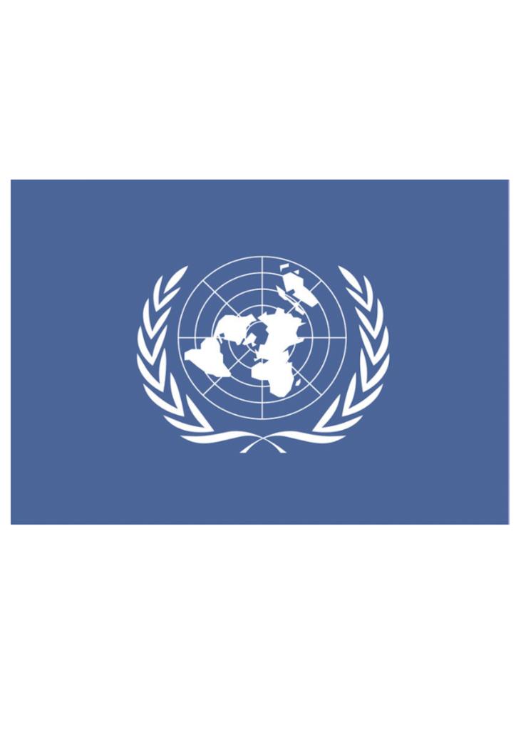 UN News Release 4 August 2020